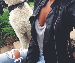 fashion, dog, and style image