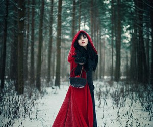 forest, little red riding hood, and red image