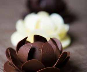 chocolate, delicious, and passion image