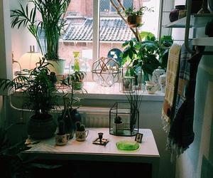 design, green, and interior image