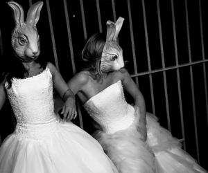 black, bunny, and costume image