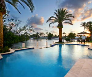 pool, palm trees, and luxury image