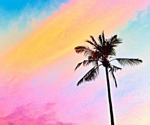 paradise, summer, and tropical image