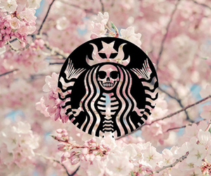 starbuck, wallpaper, and starbuks image