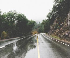 road, rain, and tree image