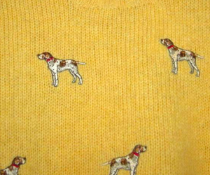 dog, yellow, and tumblr image