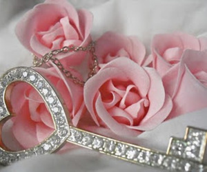 rose, key, and pink image