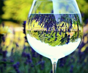 wine and lavender image