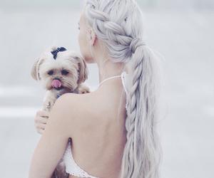 hair, dog, and white image