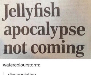 apocalypse, jellyfish, and funny image