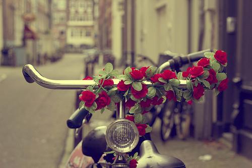 رمزيات ورد رومانسي صور ورد طبيعي رومانسية