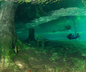 underwater and water image