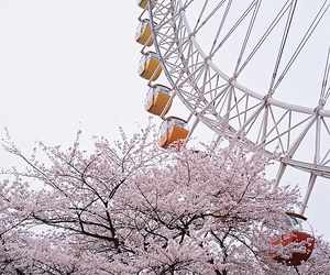 carnival, ferris wheel, and spring image