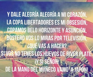 football, pasion, and river plate image