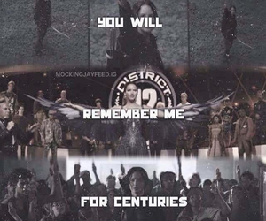 mockingjay, book, and movie image