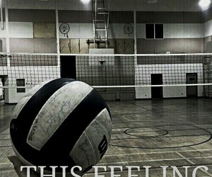 game, sport, and volleyball image
