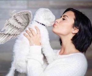 demi lovato, demi, and buddy image