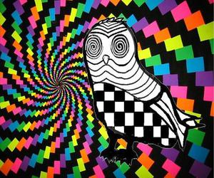 owl, psychedelic, and swirl image