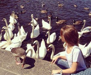 girl and Swan image