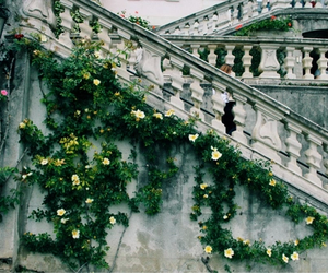 flowers, stairs, and castle image