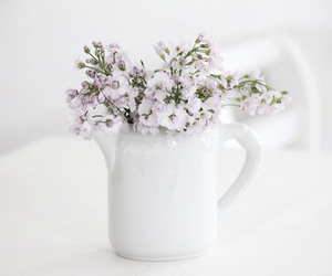 flowers, white, and purple image