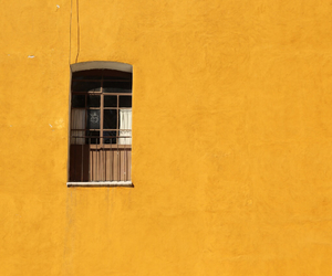 yellow, aesthetic, and window image