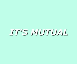 baby, mutual, and tumblr image
