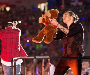styles, teddy bear, and harry image