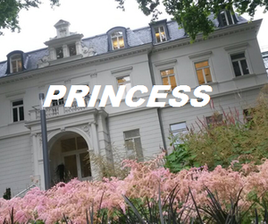 princess, pink, and aesthetic image