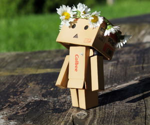 danbo, flowers, and happy image