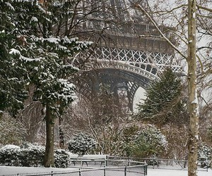 beauty, france, and paris image
