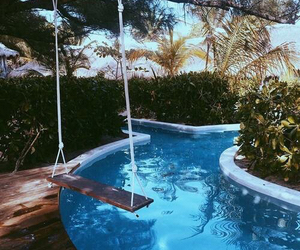 blue, swimming pool, and palms image