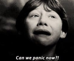 harry potter, panic, and ron weasley image