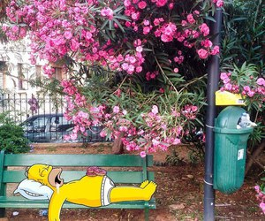flowers, pink, and simpsons image