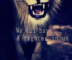 fighter, lion, and quote image