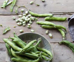 beans, food, and healthy image