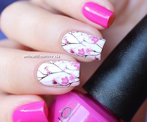 cherry blossom, pretty, and summer image