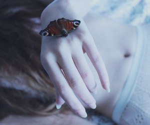 butterfly, pale, and hand image