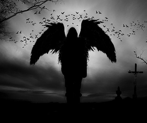 angel, black, and dark image
