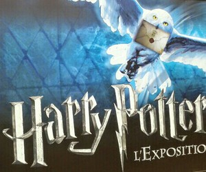books, exposition, and harry potter image