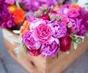 blossom, fresh, and flowers image