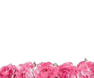 wallpaper, rose, and flowers image