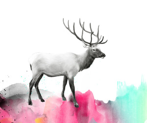 art, animals, and colors image