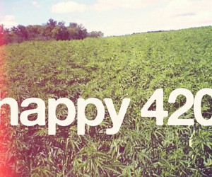 420, weed, and happy image