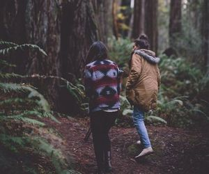 forest, tree, and friends image
