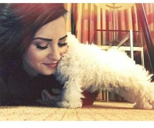 demi lovato, dog, and tumblr image