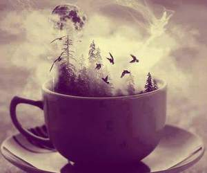 cup, bird, and forest image