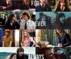 books, couples, and hermione granger image