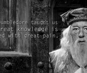 harry potter, albus dumbledore, and dumbledore image