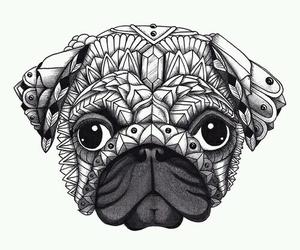 dog, drawing, and pug image